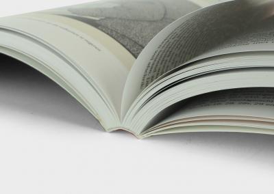 de-spiegel-van-roermond-genaaid-gebonden-boek
