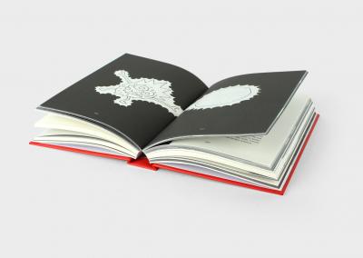 zoet-zuut-verlangen-roman-boek