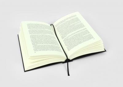 boek-binnenwerk-waar-bemoei-ik-me-mee