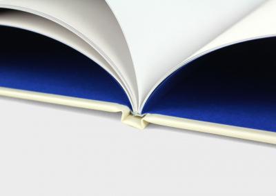 kinderboek-genaaid-gebonden-boek-de-vlinderprinsesjes